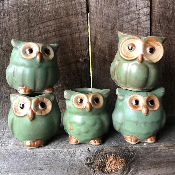 NWB owl 🦉 succulent plant pots